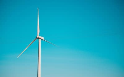 ACEES in the Realization of the Turkana Wind Farm Project