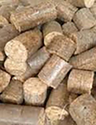 Sugarcane Briquette